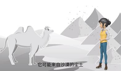 知识百科动画